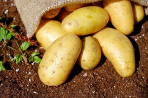 potatoes uses do something new