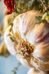 poondu paal seimurai payangal பூண்டு பால் செய்முறை மற்றும் பயன்கள் how to make garlic milk